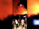 Scene de infern la un festival. Momentul în care tinerii fug după izbucnirea unui incendiu