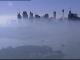 fum Sydney