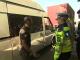 Șoferi băuți și probleme tehnice: pericolele găsite de polițiști pe șoselele din România
