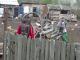 Zeci de percheziții la hoții de lemne din Vaslui. Incredibil ce au descoperit polițiștii
