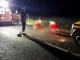 Accident cu patru victime în Călărași, după ce o căruță a fost spulberată de o mașină