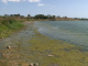 Lacul Techirghiol, grav afectat de seceta extremă. Ce se întâmplă cu nămolul terapeutic