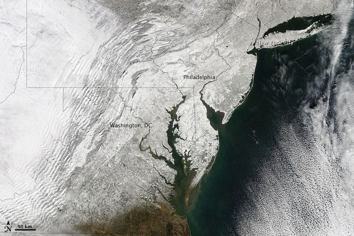 Alerta pe Glob. Gheata de la Polul Nord se va topi in intregime