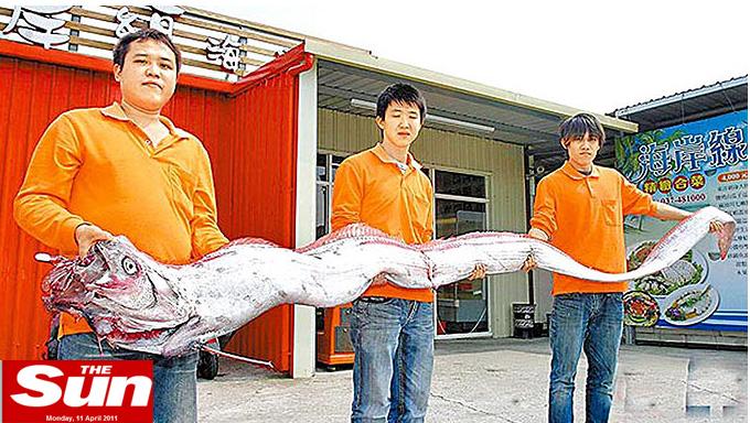 FOTO. Monstru marin descoperit in Taiwan, semn prevestitor pentru tsunami?