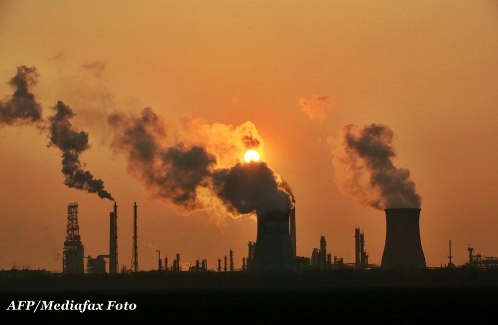 Profit de 545 mil euro pentru Petrom, cea mai mare companie din Romania, in primul semestru din 2013