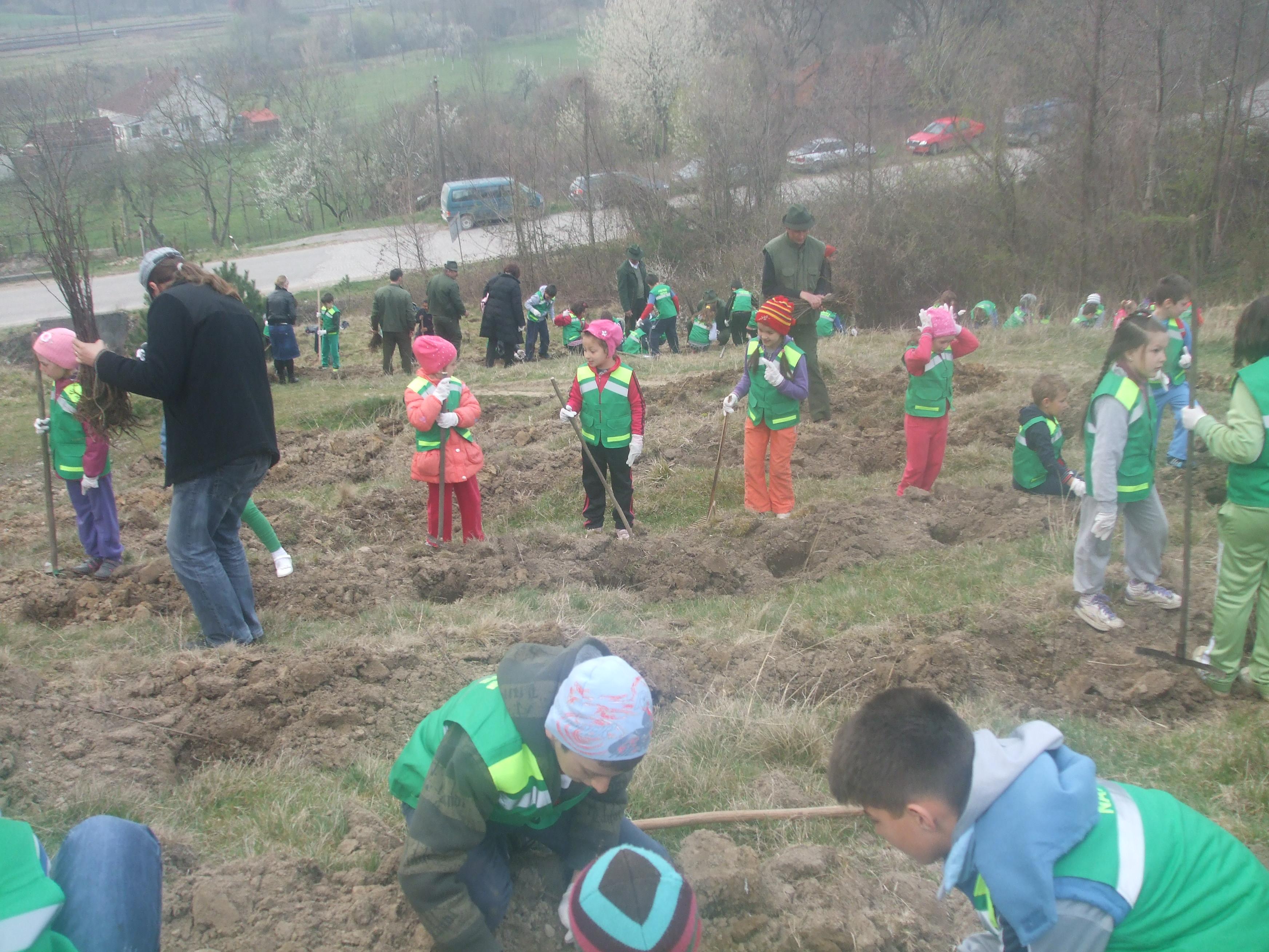 """""""Prietenii naturii"""". Zeci de elevi au plantat 2000 de puieti de salcami intr-o localitate din Bihor"""