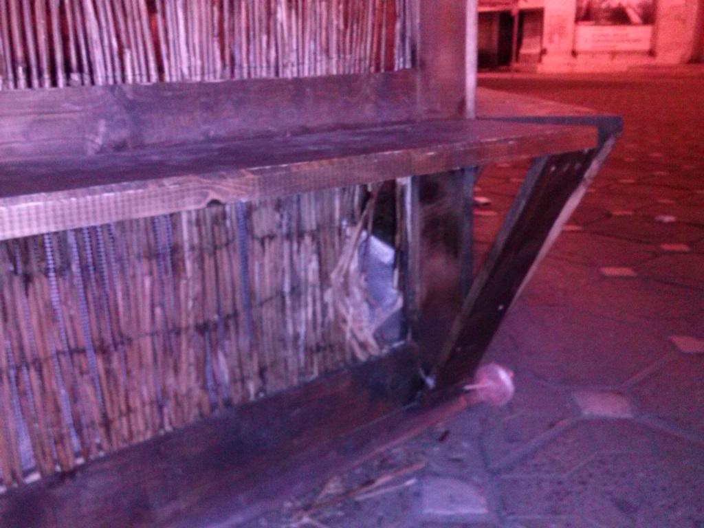 Doi tineri din Timisoara au fost amendati in ziua de Pasti, dupa ce au vandalizat cuibul cu iepurasi