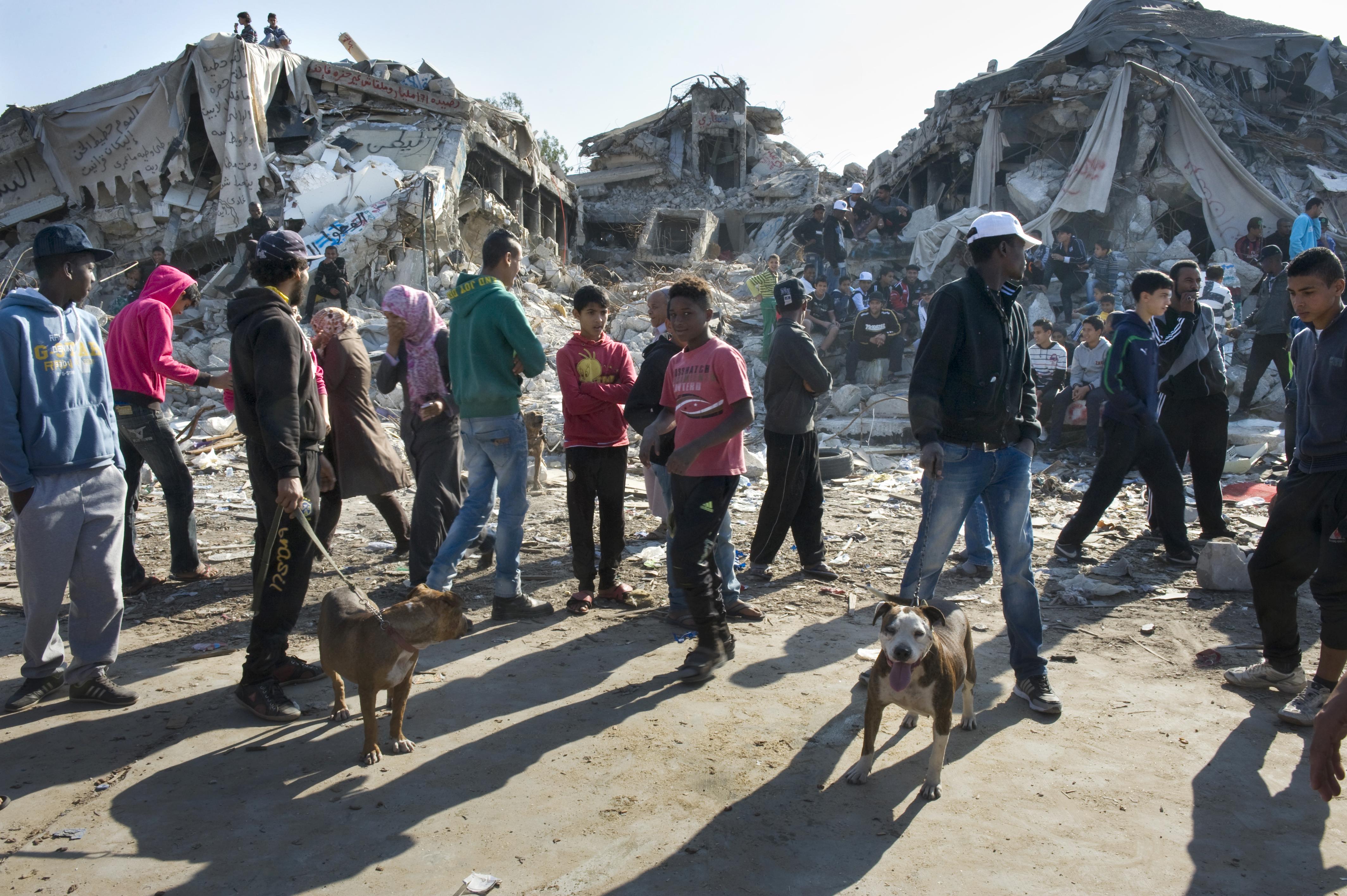 Cum arata fostul palat al dictatorului libian Muammar Gaddafi, la 4 ani de la revolutie. Targ de animale in ruinele cladirii