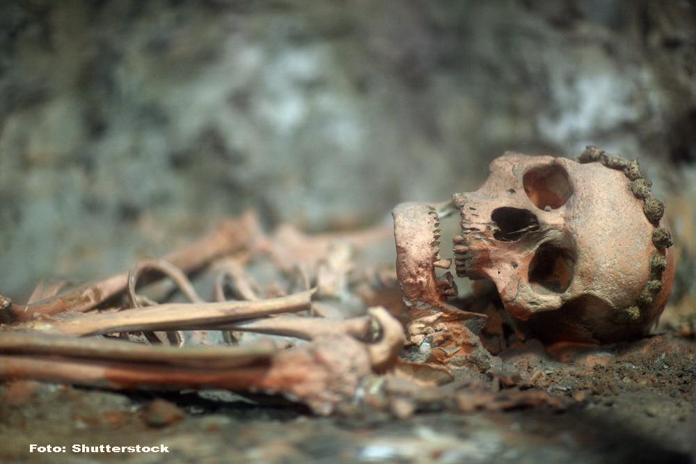 Descoperire extrem de importanta in India: schelete care provin din una dintre cele mai vechi civilizatii ale lumii