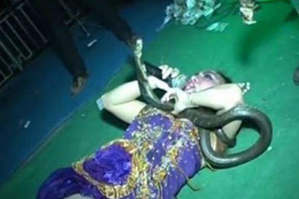 O cantareata a murit pe scena, in timpul concertului, dupa ce a fost muscata de o cobra. VIDEO