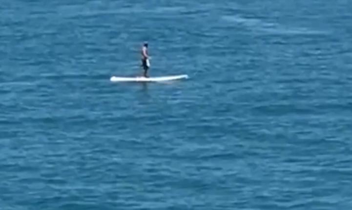 Plutea linistit pe o placa de surf, cand a avut parte de o surpriza uriasa. Ce s-a intamplat in secunda urmatoare. VIDEO
