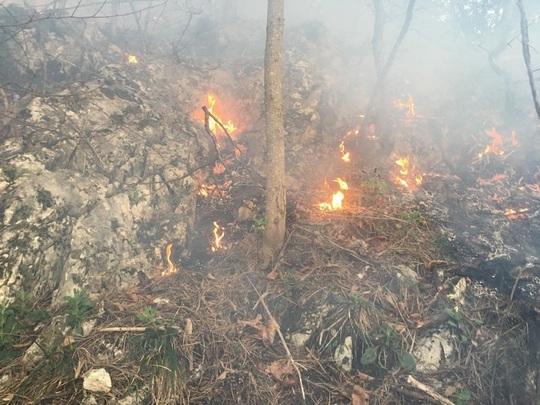 100 de hectare de pasune din Harghita, cuprinse de flacari. Incendiu de vegetatie si pe muntele Tampa, la Brasov