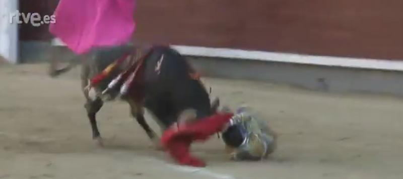 Scene dramatice pe o arena din Madrid. Un toreador este aruncat in aer de taur, apoi strapuns cu coarnele in gat. VIDEO