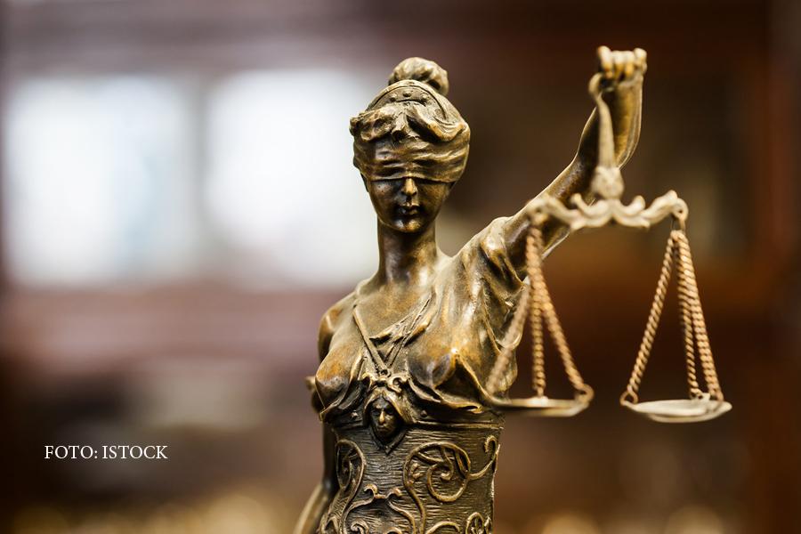 Şefa ICCJ cere Parlamentului ca legile Justiţiei să fie retrimise la MJ
