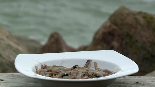 Romanii consuma creveti din strainatate, desi avem si noi, chiar mai gustosi. Cum se mancau garizii pe timpul lui Ceausescu
