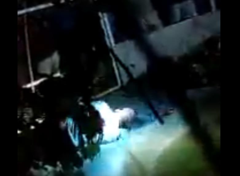 Un violator a fost aruncat la crocodili în Mexic. Reacţia poliţiei. VIDEO