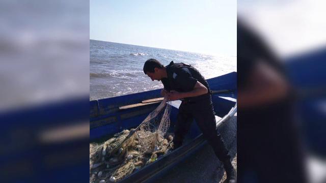 """Dosare penale pentru pescarii prinși la braconat ultimii """"dinozauri"""" din Dunăre"""