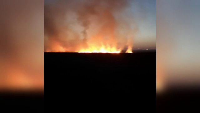 Incendiu de vegetație uscată, în zona plajei Vadu. Au fost distruse peste 250 de hectare