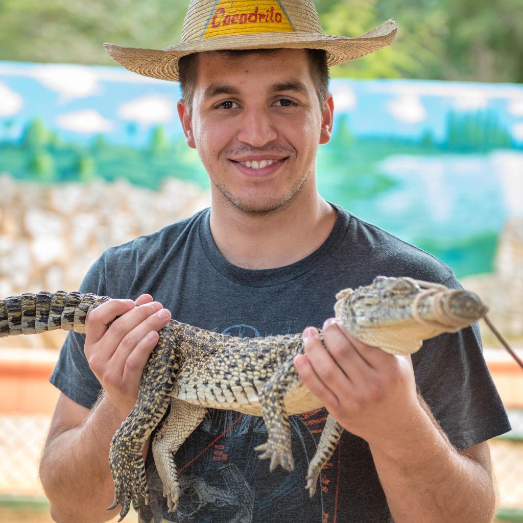 Un crocodil a murit din cauza stresului provocat de muzica de la o petrecere