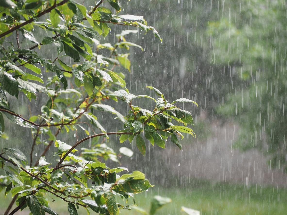 Un ciclon se rotește deasupra României. Avertizarea lansată de meteorologi