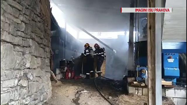 Incendiu puternic la o fabrică din Comarnic. O bună parte din utilaje s-a făcut scrum