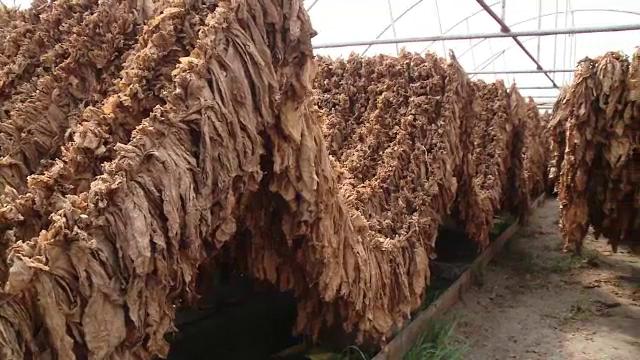 Care este cel mai exportat produs agricol al României