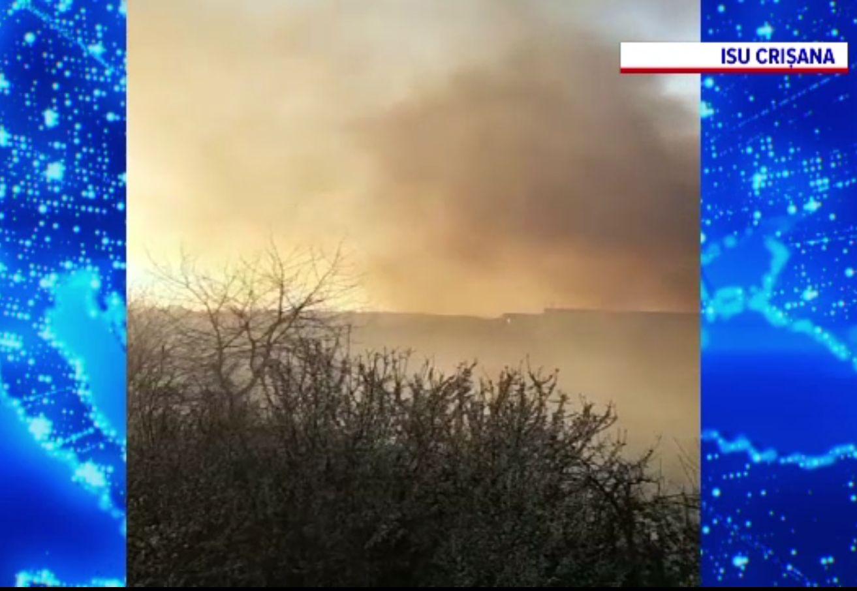 Un incendiu de vegetație amenința fabricile din apropiere de Oradea. Pompierii l-au lichidat după patru ore