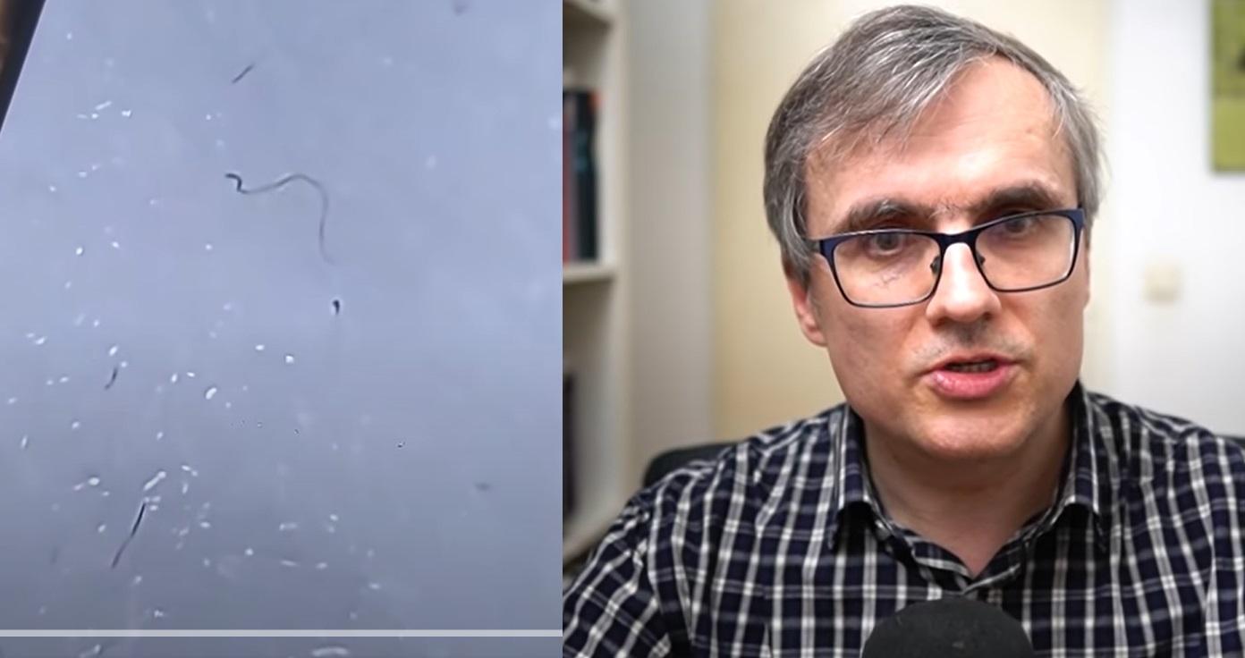 """""""Paraziți în măștile de protecție"""". Conspirația demontată de fizicianul Cristian Presură"""