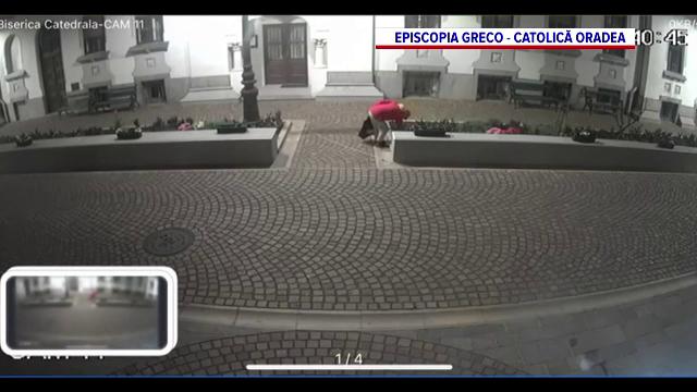 Un hoț a fost surprins în timp ce smulgea florile din jurul catedralei din Oradea