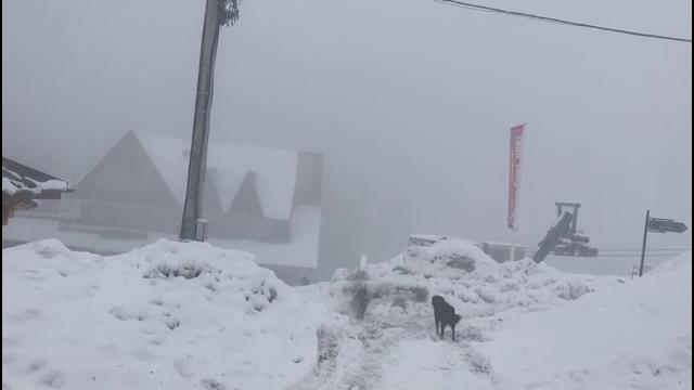 Ninsori la mijlocul lui aprilie. Cu zăpadă de peste 1 metru la munte, vacanța de Paște va fi ca una de iarnă