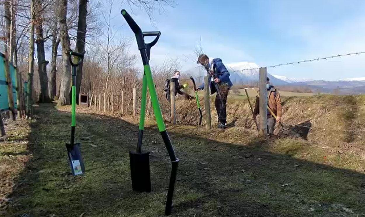 Cum a fost marcată Ziua Pământului la Brașov. Apelul lansat de organizațiile de mediu