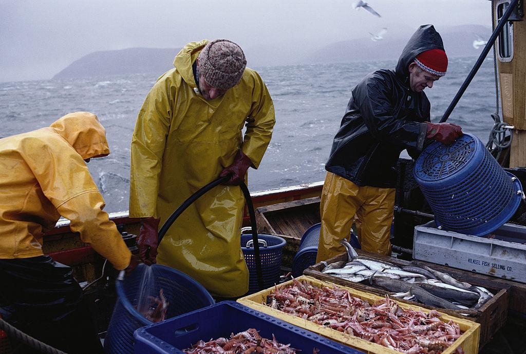 """Pescarii francezi au blocat camioanele cu pește din Anglia. """"Vreți să vă păstrați apele? Atunci păstrați-vă și peștele"""""""