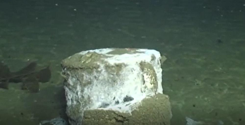 Descoperire incredibilă în Oceanul Pacific. Au fost găsite peste 25.000 de butoaie cu DDT