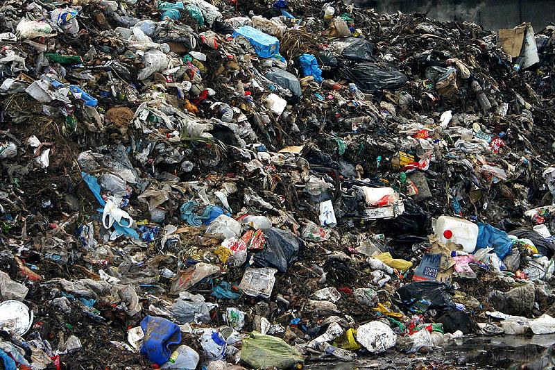 Autoritatile stau prost la capitolul ecologie. Nu stiu sa stranga gunoiul
