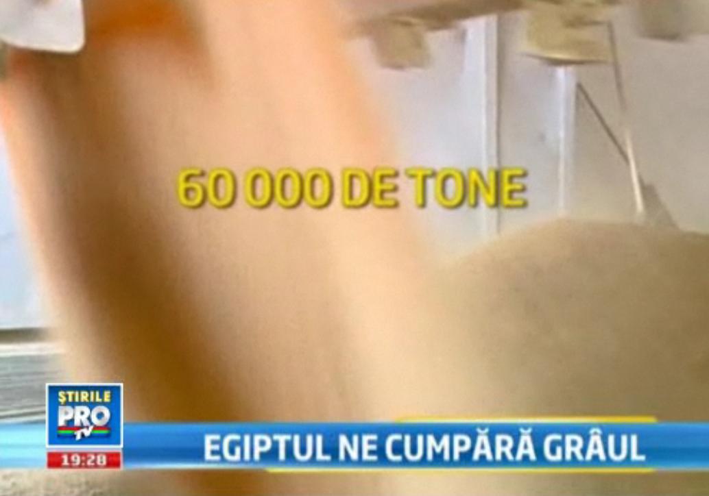 Egiptul a cumparat grau din Romania in valoare de 16.6 milioane de dolari