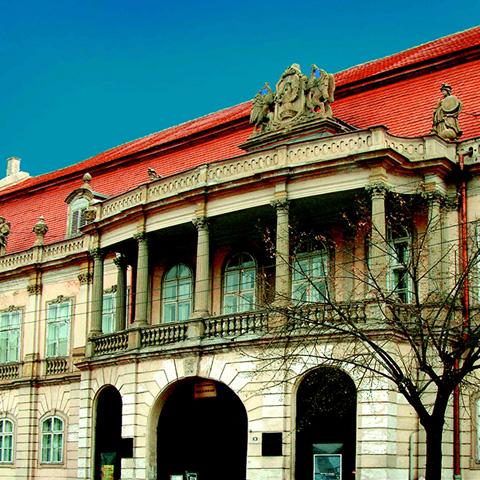 Program interactiv la Muzeul de Arta din Cluj-Napoca
