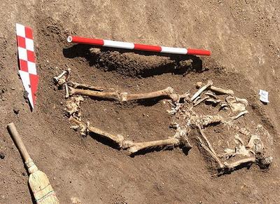 Schelet uman fara cap, gasit de arheologi in zona Curtii Domnesti din Targoviste