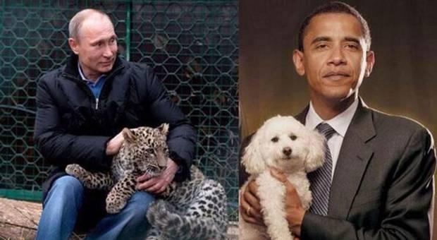 Vicepremierul rus Rogozin a publicat o fotografie pe Twitter in care Putin tine in brate un leopard, iar Obama un catel