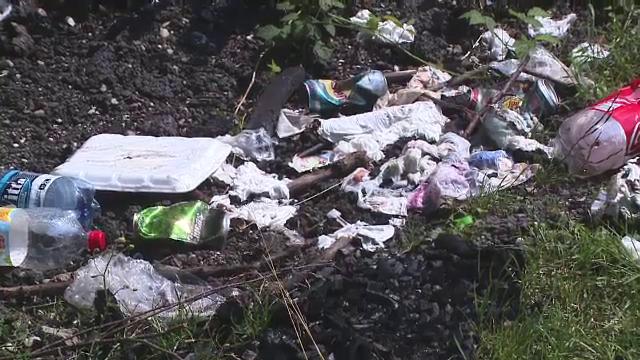 Peisaj dezolant la Rasnov: dupa gratare, zona e sufocata de gunoaie. De ce nu sperie pe nimeni Legea Picnicului
