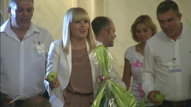 Reactia Elenei Udrea, dupa ce Cristian Diaconescu a iesit din PMP: