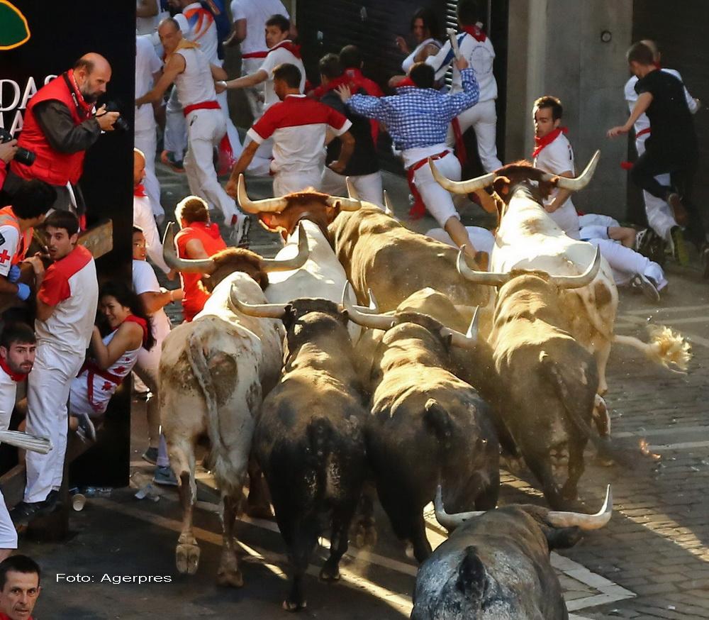 Un barbat a murit impuns cu coarnele cand filma un grup de tauri eliberati pe strazi, in Spania