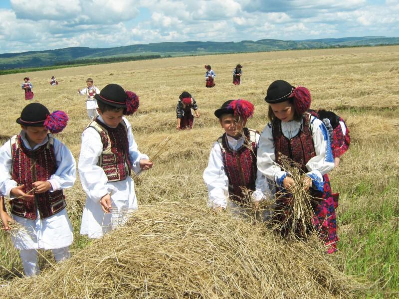 Se apropie festivalul IN TRANSYLVANIA, care are loc la munte, in Tara Fagarasului: Sucarpati, N.O.H.A., Lemon Bucket Orkestra