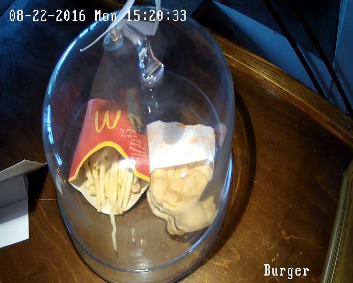 Cum arata ultimul hamburger cumparat de la McDonald's in Islanda, in 2009. Curiosii pot urmari live transformarea