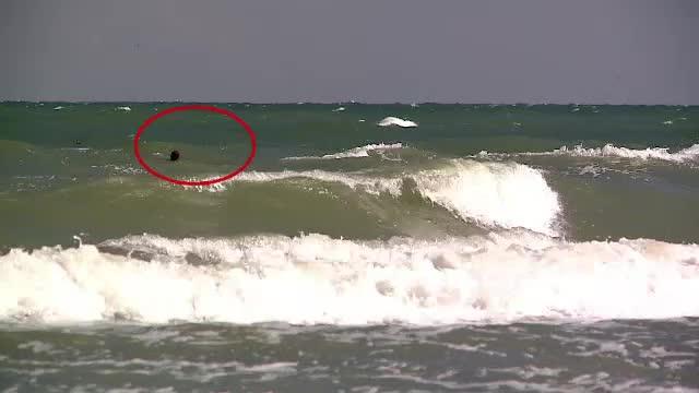 Drama pe plaja de la Saturn. Un tata a murit incercand sa-si salveze fiul de 8 ani de la inec