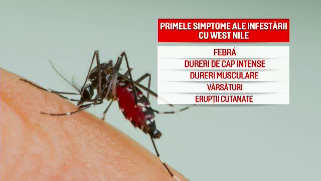 200 de cazuri de infecţii cu virusul West Nile. 21 de oameni au murit