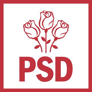 """PSD Constanţa, avertisment înainte de Ziua Marinei. """"Nu este exclus"""""""