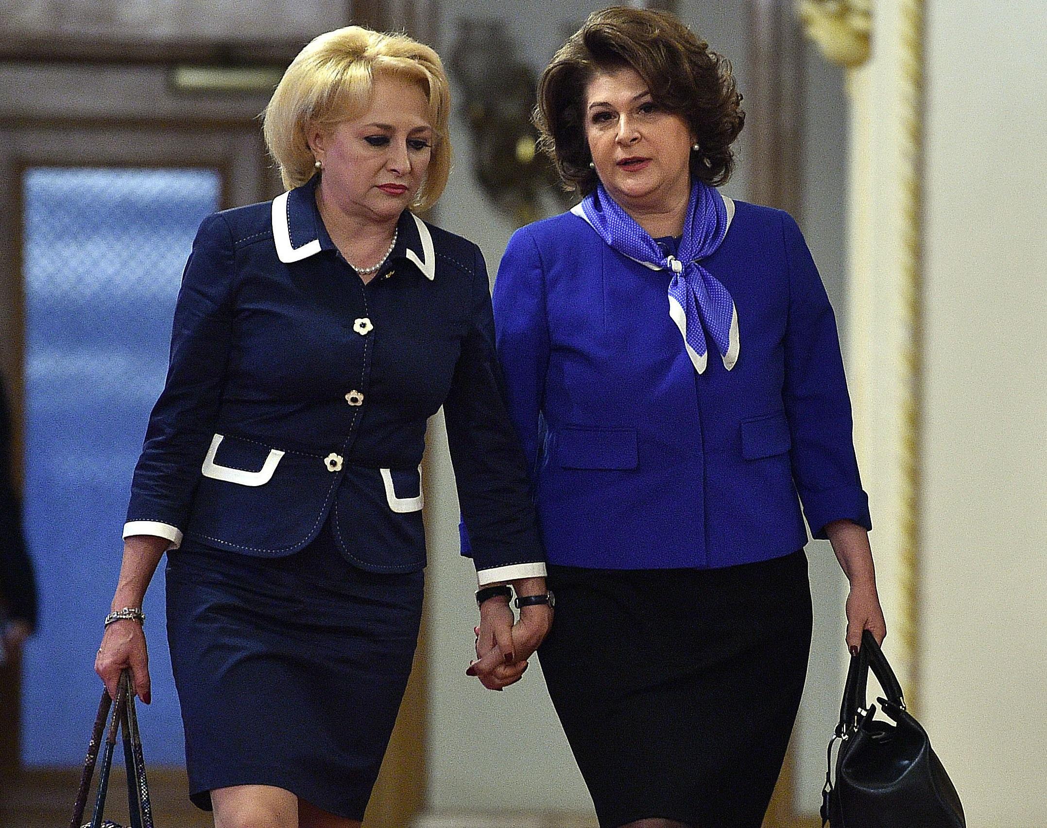 Ministrul Rovana Plumb: