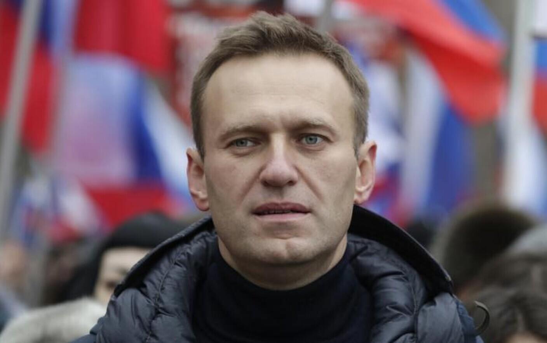 """Marturiile unei femei care a facut un selfie cu Navalnii inainte de a se prabusi: """"Dupa strigate, nu parea o fiinta umana"""""""