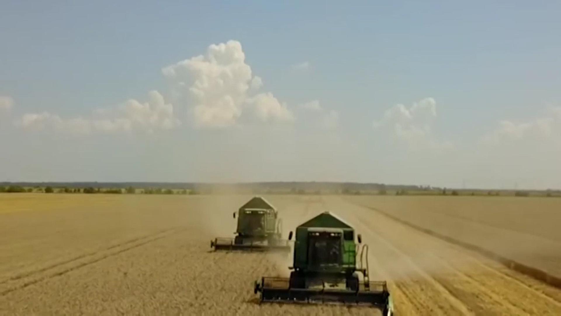 Tot mai mulți români pornesc afaceri în agricultură. Primesc multiple opțiuni de finanțare