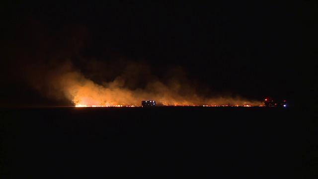 Incendiile de vegetație încep să facă ravagii și în România. Mai multe hectare au ars în Corbeanca